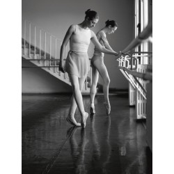 FEMALE BALLET DANCERS EXERCISING (DETAIL)