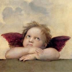 ANGELO II - MADONNA SISTINA (DETAIL)