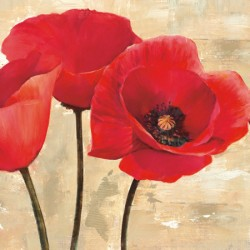 RED POPPIES (DETAIL)