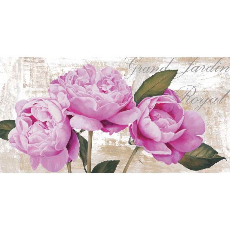 Cuadros de rosas grand jardin royal for Jardin royal