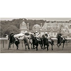 PRIX DE DIANE PRESTIGIOUS HORSE RACE IN CHANTILLY