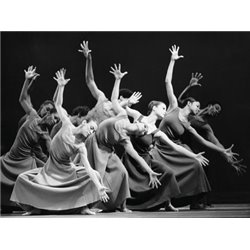ALVIN AILEY AMERICAN DANCE THEATER PERFORMERS