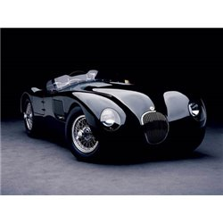 1951 JAGUAR C-TYPE