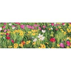 FIELD OF FLOWERS (DETAIL)
