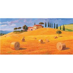 COLLINE IN TOSCANA