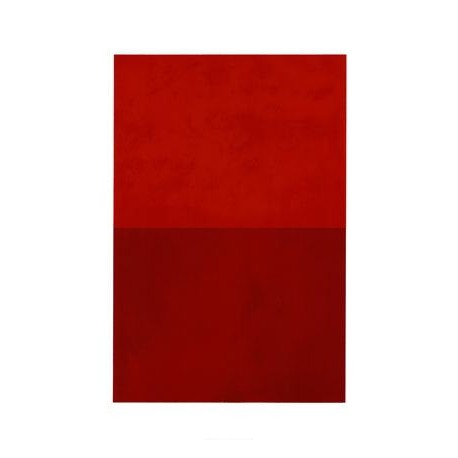 RED MONOCHROME, 2005