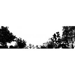 LANDSCAPE, 2007
