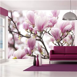Fotomural Ramo de magnolia floreciente