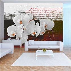 Fotomural El diario y la orquídea
