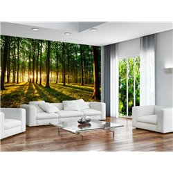 Fotomural Spring Forest