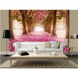 Fotomural Pink Carpet