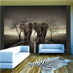 Fotomural Pareja De Elefantes