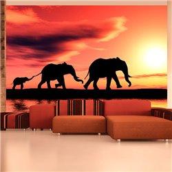 Fotomural Elefantes En Familia