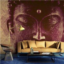 Fotomural Buda Meditando