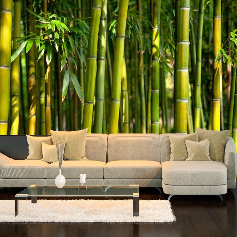 Fotomurales jard n de bamb for Fotomurales naturaleza