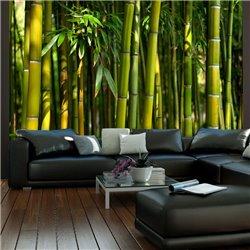 Fotomural Bosque Asiatico de Bambú