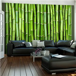 Fotomural Frente de Bambú Verde