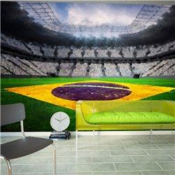 Fotomural Estadio Brasileño