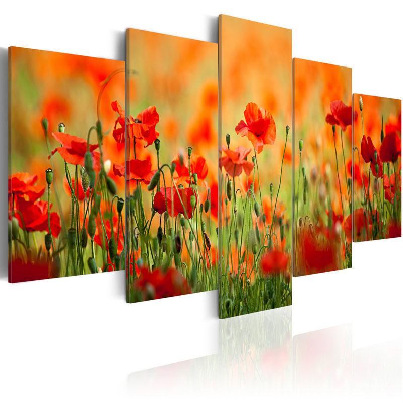 Cuadros de flores amapolas de colores vivos - Cuadros colores vivos ...