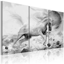 Cuadro Unicornio en el borde del mundo