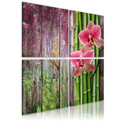 Cuadro Bambú y orquídea