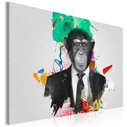 Cuadro Mr Monkey