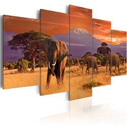 Cuadro África: elefantes