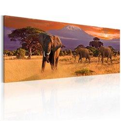 Cuadro Marcha de los elefantes africanos
