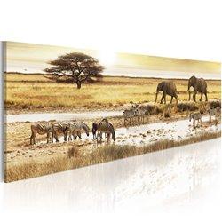 Cuadro África: en el pozo de agua