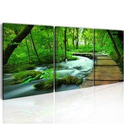 Cuadro Camino forestal - tríptico
