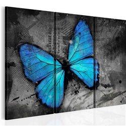 Cuadro El estudio de la mariposa - tríptico