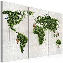 Cuadro Tierra verde de las mariposas - tríptico