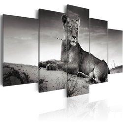 Cuadro Una leonesa en el desierto