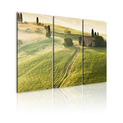 Cuadro Bajo el sol de la Toscana