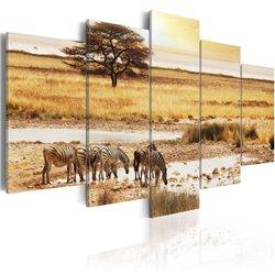 Cuadro Zebras en una sabana