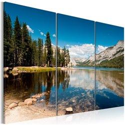 Cuadro Montañas, árboles y lago puro
