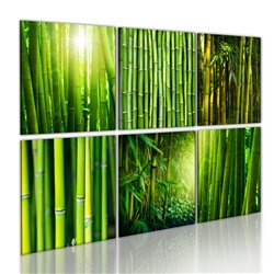 Cuadro Las diferentes caras de bambú