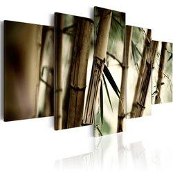 Cuadro Bosque de bambú asiático