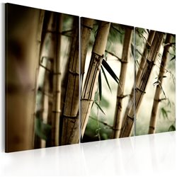 Cuadro En un bosque tropical