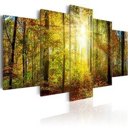 Cuadro Mystical Forest