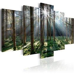 Cuadro Fairytale Forest