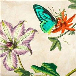Panneau Botanique VI