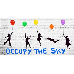 Occupy the Sky