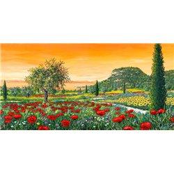 Le colline in fiore
