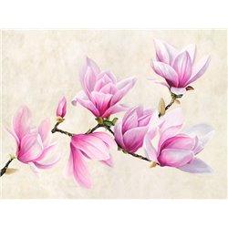 Ramo di magnolia