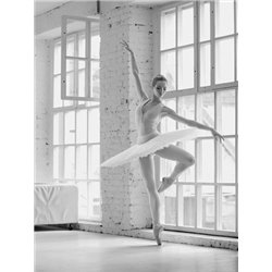 Ballerina Rehearsing