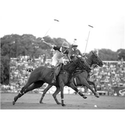 Polo players, Argentina