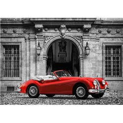 Luxury Car in front of Classic Palace