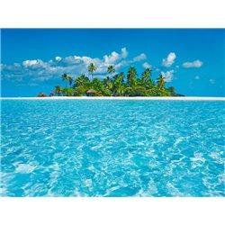 Tropical lagoon with palm island, Maldives