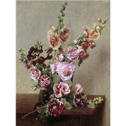 Roses tremieres